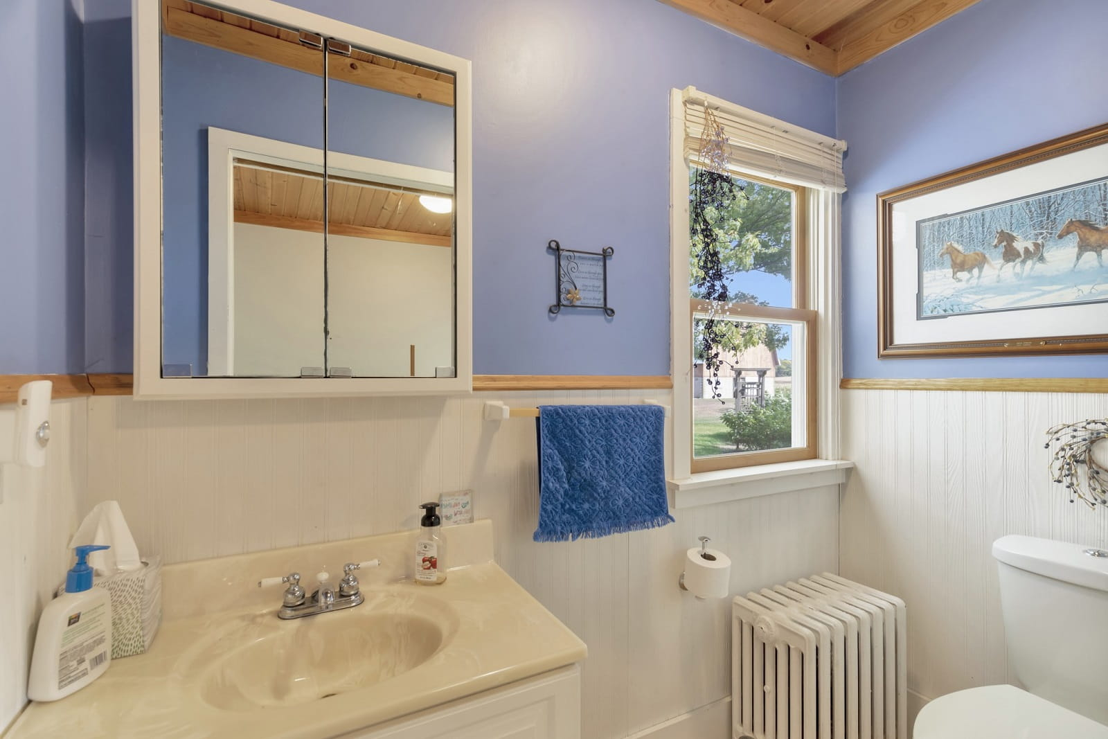 Real Estate Photography in Belle Plaine - MN - Bathroom View