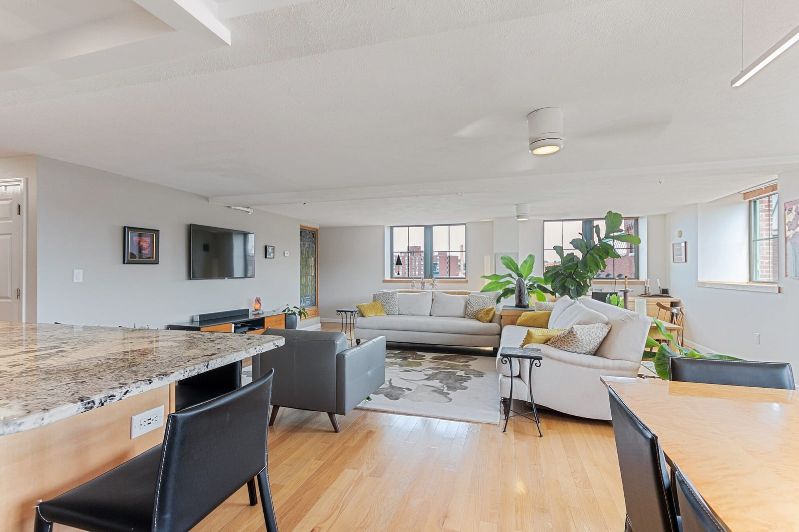 Real Estate Photography in Lowell - MA - USA - Living Area View
